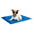 All for Paws Chill Out Always Cool Kühlmatte für Hunde